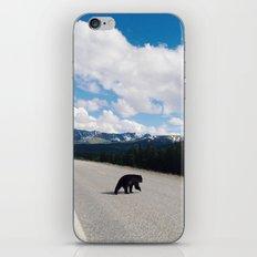 Black Bear Crossing iPhone & iPod Skin