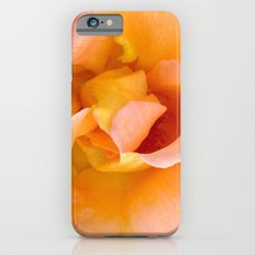 Orange ,Rosa Rose iPhone 6s Slim Case