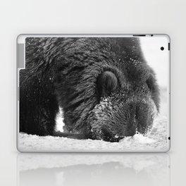 Alaskan Grizzly Bear in Snow, B & W - 2 Laptop & iPad Skin