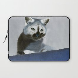 Blue Snow Shoe Cat on the Prowl Laptop Sleeve