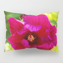 Jazzberry Jam Hibiscus Pillow Sham