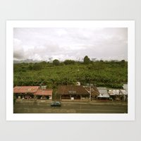 Zona Cafetera Art Print