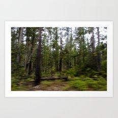 Motion Blurred Forest Art Print