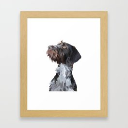 German Wirehaired Pointer Framed Art Print