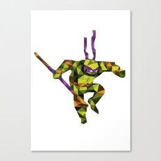 Bo Staff Turtle Canvas Print