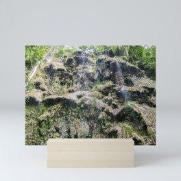 Tumalog Falls, Cebu, Philippines Mini Art Print