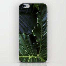Edges iPhone Skin