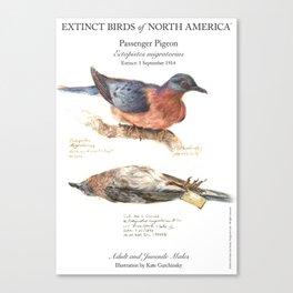 Extinct Birds: Passenger Pigeon Canvas Print