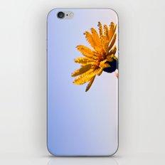 Morning Wash iPhone & iPod Skin