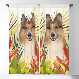 Collie Dog sitting in Garden Blackout Curtain