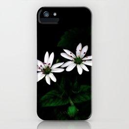 Botanical Still Life Little White Flowers iPhone Case