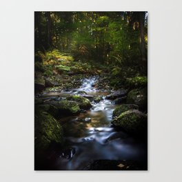 Reality lost Canvas Print