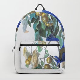 Florida Jay - John James Audubon Backpack
