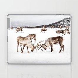 Playing Reindeers In Snow In Tromsø   North Of Norway Photo   Travel Photography Art Print Laptop & iPad Skin