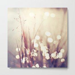 Glimmerings Metal Print