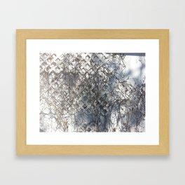 Dead Ivy Framed Art Print