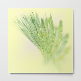 fresh vegetable Metal Print