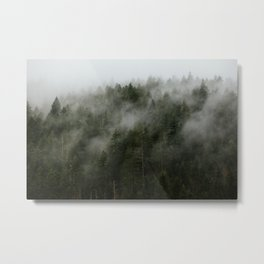Pacific Northwest Foggy Forest Metal Print