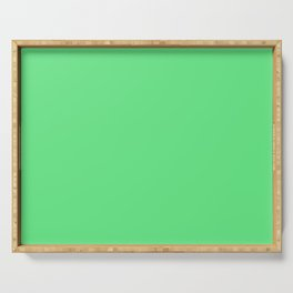 Cheap Solid Light Algae Green Color Serving Tray