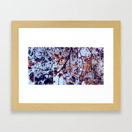 Tri Tree Framed Art Print