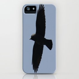 Jackdaw In Flight iPhone Case