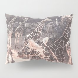 Giraffe Party // Spotted Long Neck Graceful Creatures in Wildlife Preserve Pillow Sham
