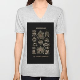 """""""Stephoidea"""" from """"Art Forms of Nature"""" by Ernst Haeckel Unisex V-Neck"""