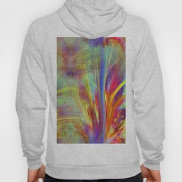 Colourful Floral Abstract Hoody