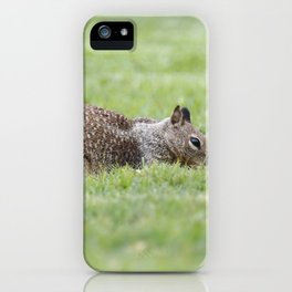 My Own Grassy Knoll  iPhone Case