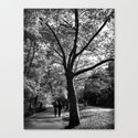 bw Central Park by haroulita