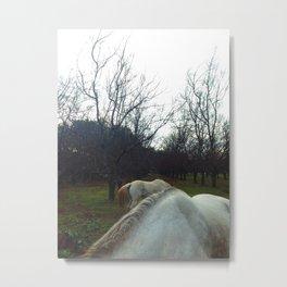 Horseback. Metal Print