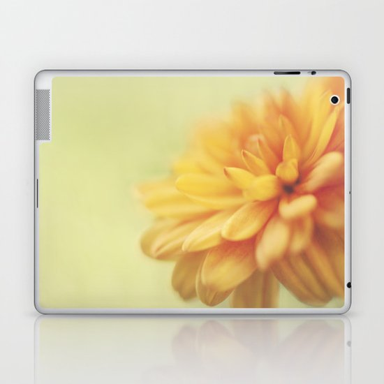 Dreamsicle Laptop & iPad Skin