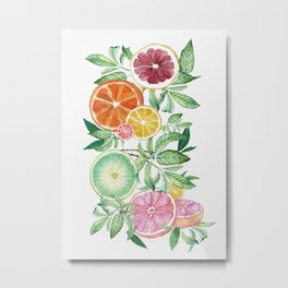 Citrus Fruit Metal Print