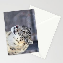 Concerned Mama Snow Leopard Stationery Cards