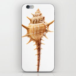 Thorn Conch Shell iPhone Skin