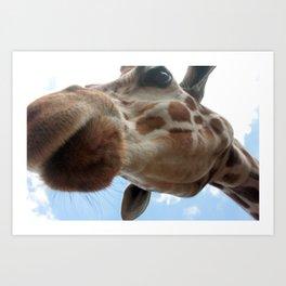 Extreme Giraffe Art Print