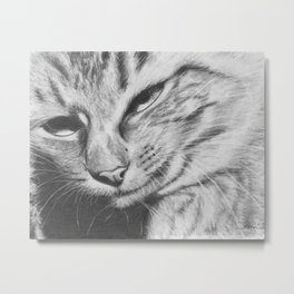 Pencil Drawing of Mr Cat Metal Print