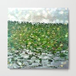 Lily Pads On The River Metal Print