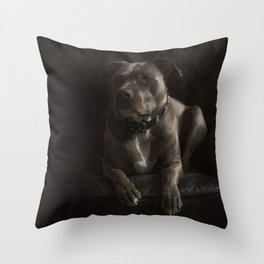 Dog Pit Bull Terrie  Throw Pillow