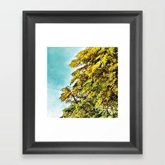 Spring 2 Framed Art Print