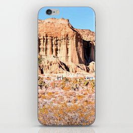 Cactus in the desert with blue sky iPhone Skin