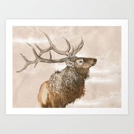Misty Morning Elk Art Print