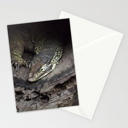 Sleeping lace monitor Stationery Cards