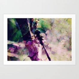 Dragonfly :: Limelight Art Print