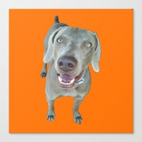caleb troy Canvas Prints featuring Caleb dog by Pop Art Pet Portraits