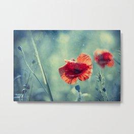 Red Poppy Flowerss On Aqua Metal Print