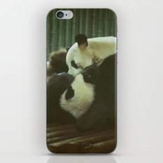 Nyatiti iPhone & iPod Skin