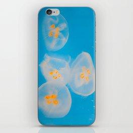 Acalephae iPhone Skin
