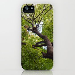 Bottom view of a crown of a huge green tree iPhone Case
