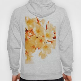 WARM BLOSSOMS Hoody